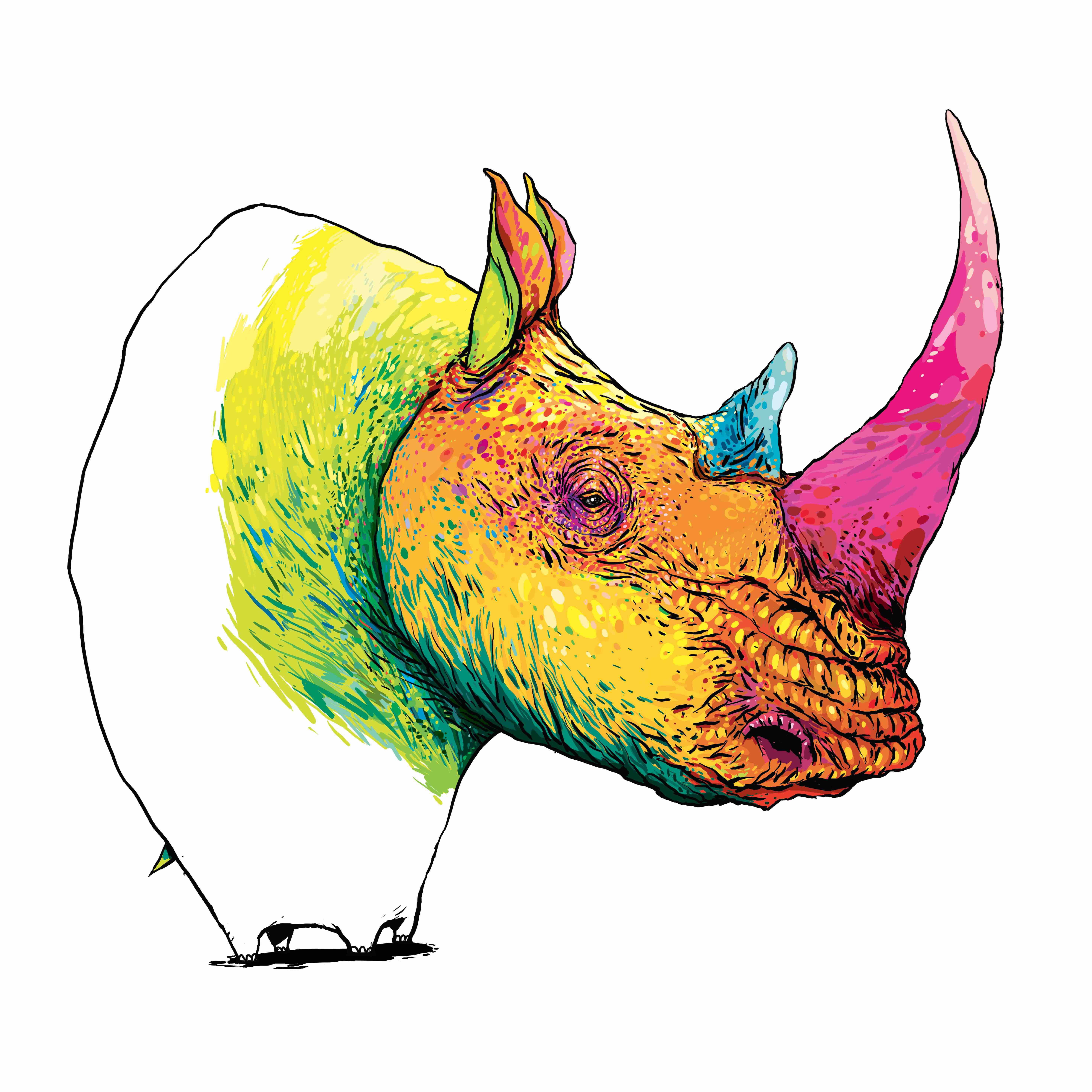 13_Rhino_Giclée print sur papier Velvet museum natural 300g_2014_ – copie